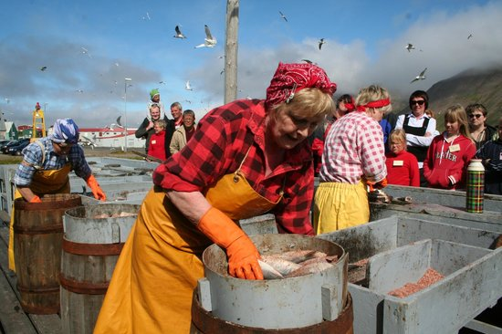 Siglufjordur, Iceland: A local herring girl gutting and salting. Demonstrations are held each Saturday in July at 15:00