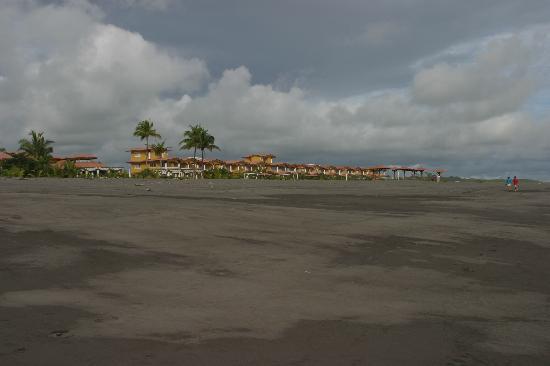 Hotel Las Olas Beach Resort: Resort from beach