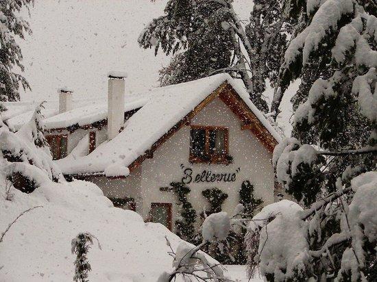 Bellevue Salon de Ta & Queso Pan y Vino: Invierno