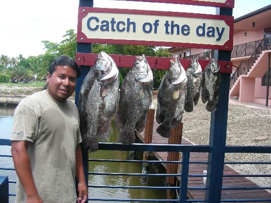 """Focus One Fishing Charters: better said   """"CATCH OF THE DAY"""""""