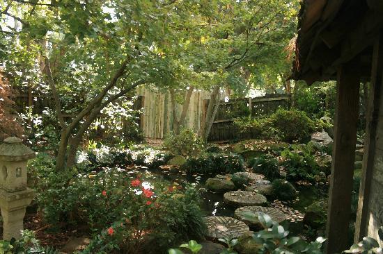 Massee Lane Gardens: Secret Japanese Garden