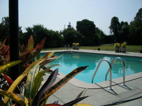 Casa Montero: The Pool