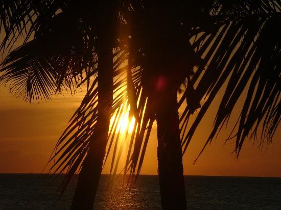Plaza Resort Bonaire: Sonnenuntergang