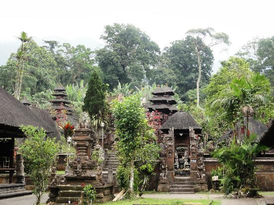 Jatiluwih Green Land: Forest Temple