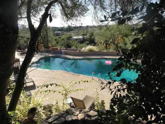 Hacienda Del Sol Guest Ranch Resort: pool from above grass area 
