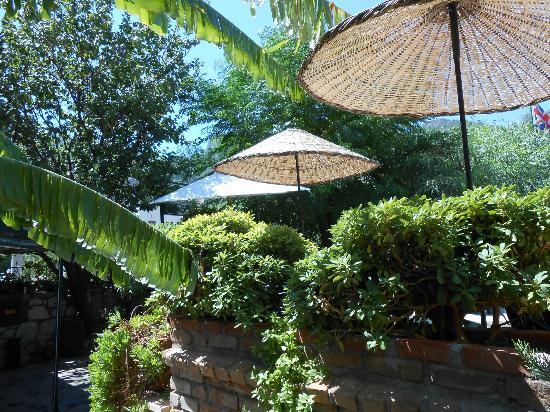 Green Garden Apartments: Green Gardens indeed