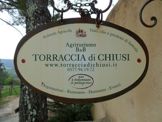 Torraccia di Chiusi : Welcome!