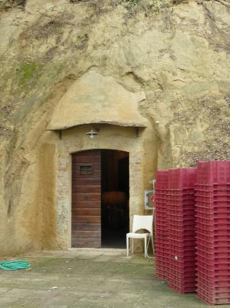 Torraccia di Chiusi: Cellar entrance