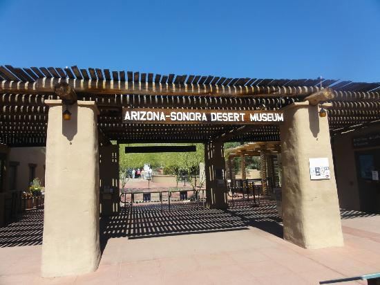 Muzeum Pustyni Arizona-Sonora: Entrance