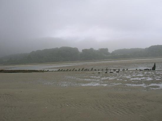 Higgins Beach: Shipwreck