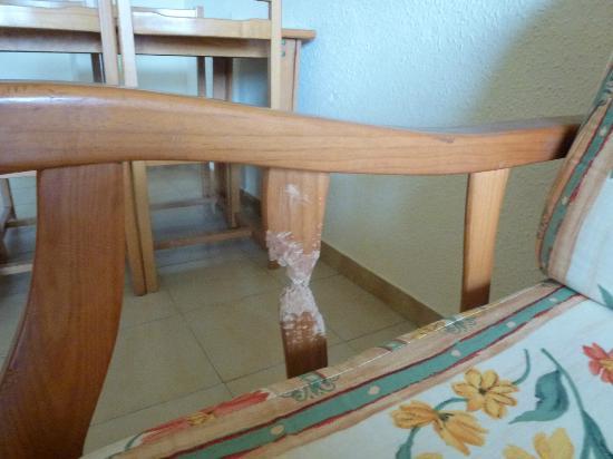 Pins Marina Apartments: the dog chewed sofa