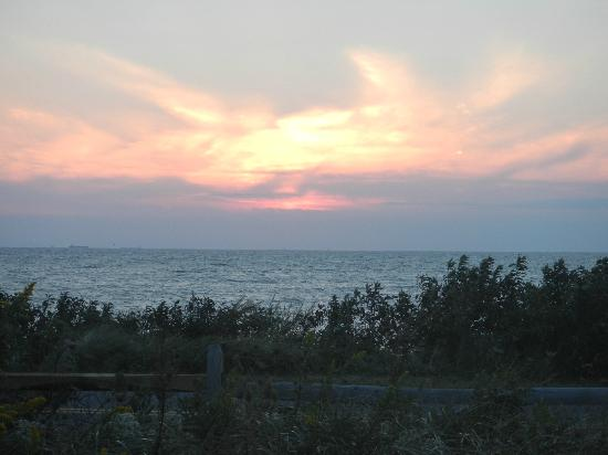 Dolphin Watch: Beautiful sunset from the deck.