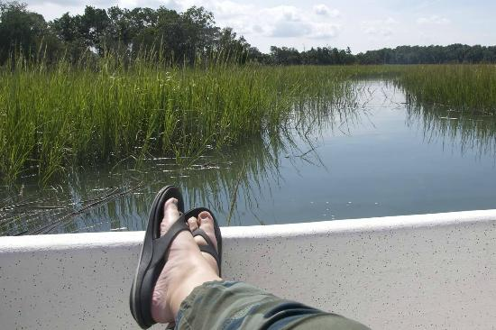 May River Excursions: the view from the boat