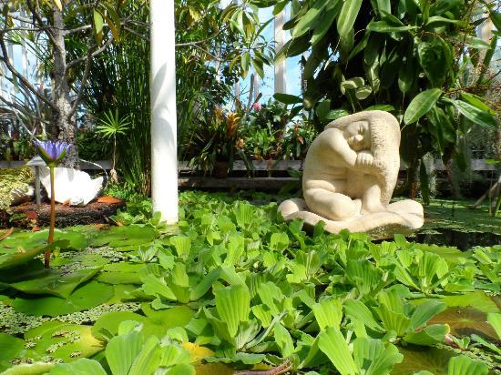 Horticultural Gardens (Tradgardsforeningen): Statue dentro una serra