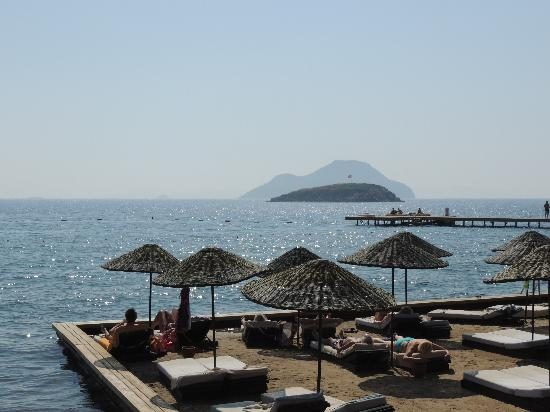 Kadikale Resort : Beach view