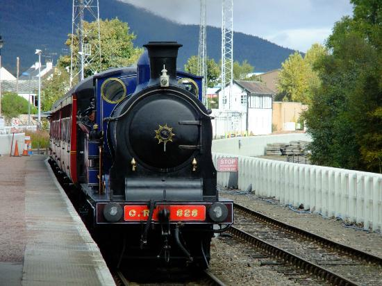 Strathspey Steam Railway: The train coming into Aviemore