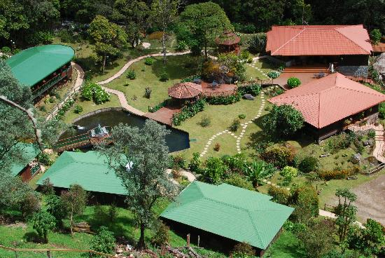 Trogon Lodge San Gerardo de Dota: The view on the premises