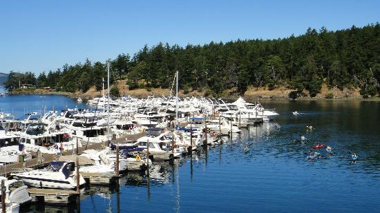 Roche Harbor Resort: View from McMillin's Dining Room