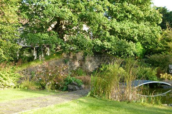 Tigh Na Leigh: The garden with pond