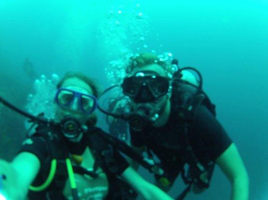 Dreamland Diver