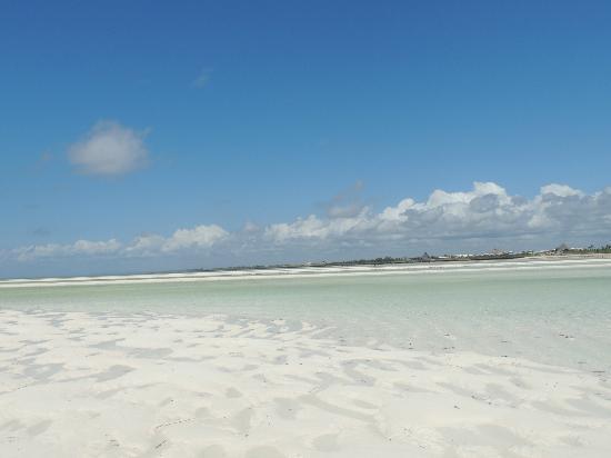 藍花楹海灘渡假村照片