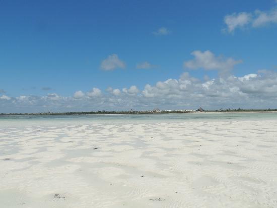 Jacaranda Beach Resort: La spiaggia dello Jacaranda