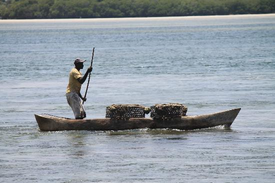Jacaranda Beach Resort: Pescatore