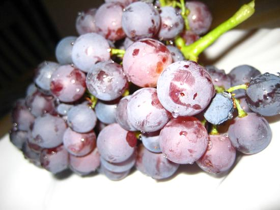 Garden Apartment Hotel: Grapes from the garden