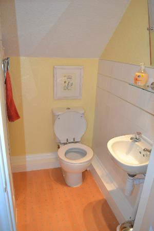mylne bridge house: toilet with shower