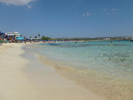 Beach (49199620)
