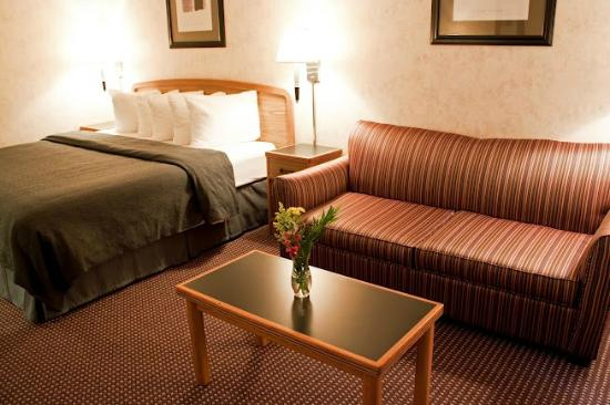 Quality Inn & Suites: King Room