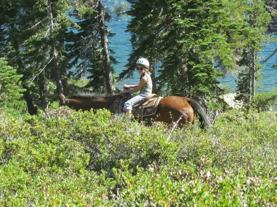 Reid Horse & Cattle Company, Inc.: Gold Lake 2.5 hr ride