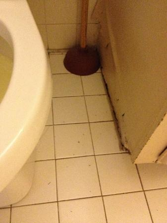 The Black Walnut Inn and Stables: Don't drop your toothbrush on that floor.