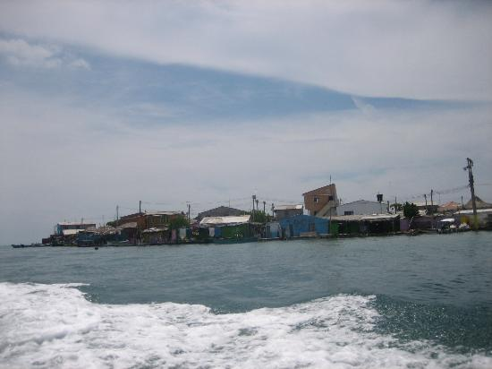 Isla Múcura: islote
