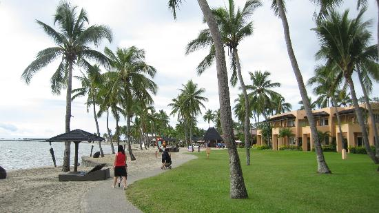 Radisson Blu Resort Fiji Denarau Island: Lots of coconut trees around to make the beach strolls more enjoyable.