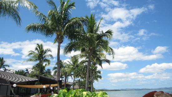 Radisson Blu Resort Fiji Denarau Island: Lovely trees and overall landscaping on the resort grounds.