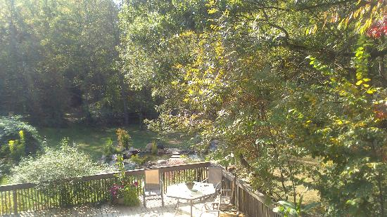 At Home In The Woods Bed And Breakfast: The view from the upper deck.