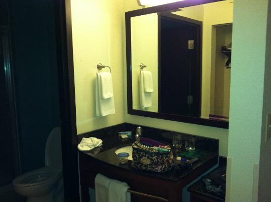 Hyatt Place North Charleston: Bathroom vanity