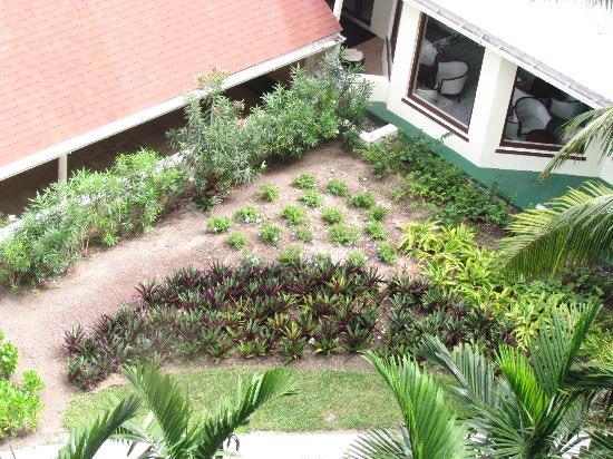 Breezes Resort & Spa Bahamas: Garden area