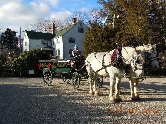 """Tidewater Inn: Christmas """"Inn"""" Madison"""