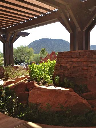 Grille at Shadowrock: Chef's herb garden at Grille at Shadow Rock