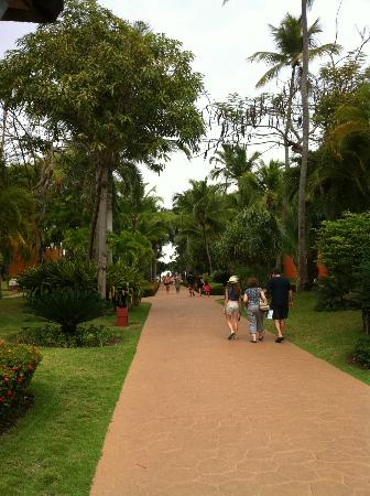 Iberostar Bavaro Suites: path to beach