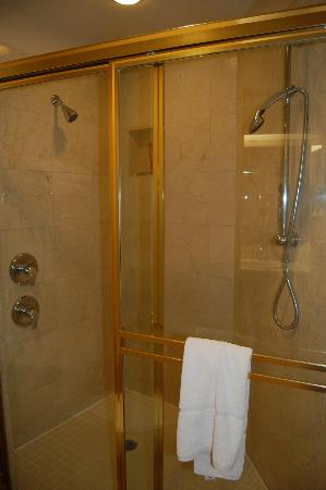 Sheraton Desert Oasis: 2 shower heads.