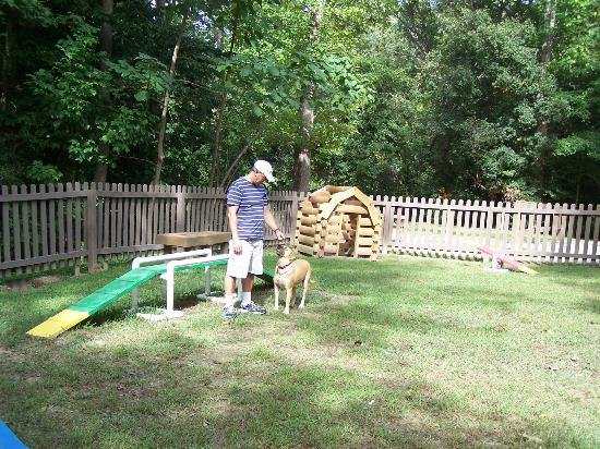 Williamsburg KOA Campground: Dog park