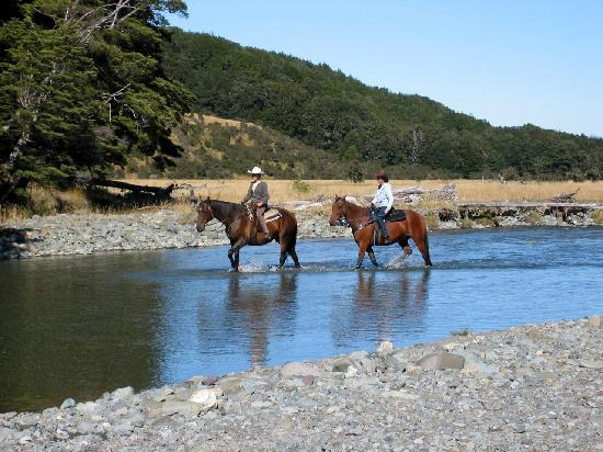 Takaro Lodge: Retreat Activities at Takaro ultimate Retreat, New Zealand