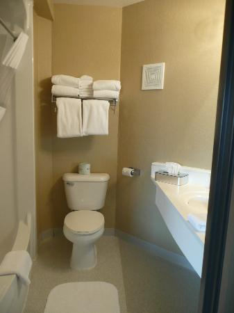 Rodeway Inn and Suites: Unusual shape to this room - cut down on vanity space a bit