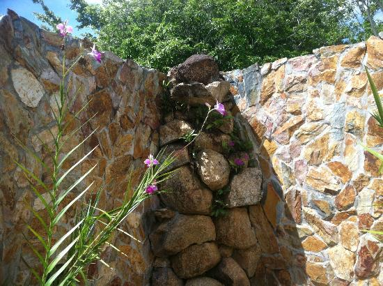 Hidden Valley Inn: outdoor waterfall shower!