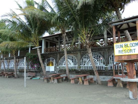 SunBloom Resort: Clean beaches and monitored grounds for your comfort
