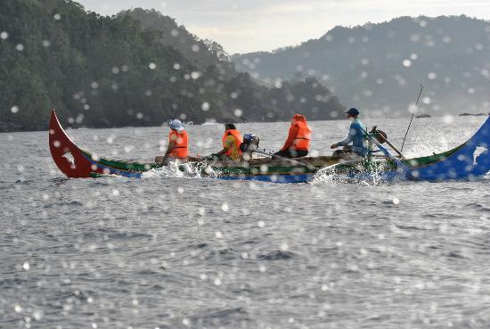 Teluk Kiluan: dolphin tour