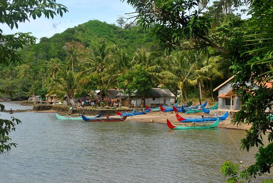 Tanggamus, Indonesia: Kiluan - Dusun Bandung jaya village